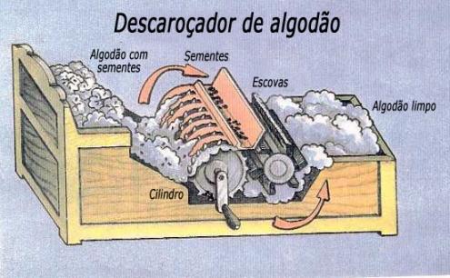 Descaroçador de algodão